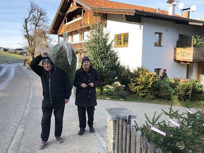 Hoftag Christbaumverkauf - Tunelhof Christbäume Weerberg Tirol