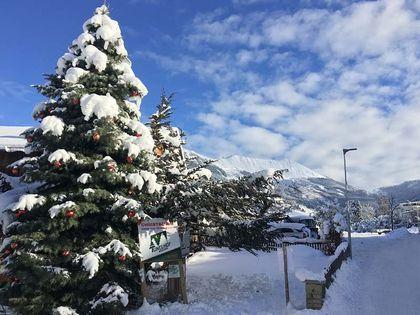 Geschäftskunden Coloradotanne - Tunelhof Christbäume Weerberg Tirol